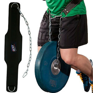 Fitness Weight Lifting Dip Belt with Chain for Dips Pull Ups Squat Back Support