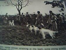 ephemera picture 1949 kennel club orwell park ipswich