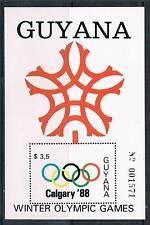 Guyana 1988 Winter Olympics MS  # 1990 MNH