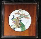 Rare Chinese Porcelain Plaque With Birds and Flowering tree