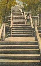 1930s Logs Steps Deer Park Ottawa Illinois Albertype hand colored postcard 8320