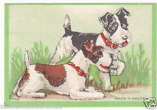 Fox-terrier POIL LONG long hair  DOG  ÉTIQUETTE ALLUMETTES MATCHBOX LABEL CARD