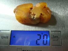 100% Natural Baltic SEA amber STONE 20 GRAMS 波羅的海琥珀