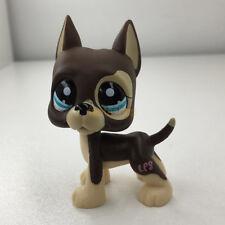 Littlest Pet Shop Brown Cream Great Dane Dog Dot Blue Eyes Puppy Rare LPS#1519