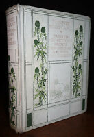 1904 Bonnie Scotland by Moncrieff Sutton Palmer SIGNED LIMITED Edition 220/500