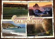 Sonoma County California, CA Wine Region Rugged Pacific Coastline etc - Postcard