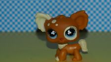 Littlest Pet Shop  Hund LPS  731