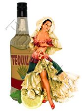 Busty Old School Style Mexican Tequila Pinup Girl Waterslide Decal Sticker S315
