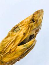 Unusual Genuine Vintage Real Stuffed Dry Fish Shark Taxidermy Home Decor