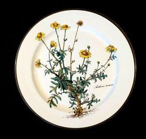 Villeroy Boch Botanica Dinner Plate
