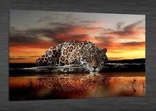 Oil Painting HD Print on Canvas Art Deco, Leopard 12x16''