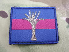 WELSH GUARDS Army Cap/Beret Badge On Regimental ID TRF Combat Shirt/Jacket Patch
