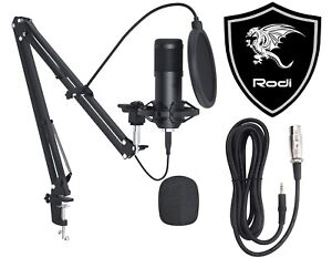 Microfono Professionale a Condensatore + Braccio Regolabile PC Streaming MUSICA