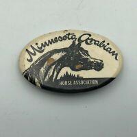 Vintage Minnesota Arabian Horse Assoc Button Pin Pinback Badge   P6