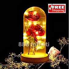 Enchanted Rose Flower Lamp Beauty and the Beast Red Rose