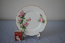 Royal Albert  'Evesham'  Apple Blossom  Side Plate (Spare)