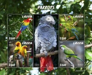 Liberia Birds on Stamps 2020 MNH Parrots African Grey Parrot Macaws 4v M/S