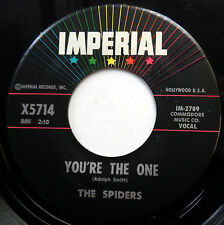 THE SPIDERS 45 You're The One / Tennessee Slim VG++ Doo Wop ORIGINAL e6020
