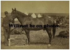 Old West Cowboy Vintage Antique Western Horse Photographs Photo Picture 8x10 54