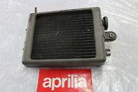 Aprilia Classic 125 Kühler Wasserkühler Watercooler Radiator #R7360