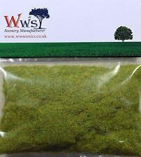 WWS Spring Modèle Basant Statique Herbe 2mm 30g G, O, HO / OO, TT, N.Z