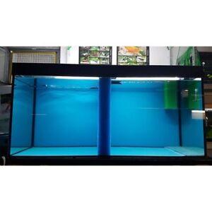 Trennfilter HMF 7cm, Maße unter 50cm x 50cm Zucht Diskus Hailea Resun Filterung