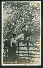 Postcard - In Elmdom Park, Solihull, West Midlands - Real Photo