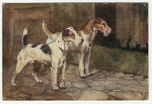 WIRE FOX TERRIER DOGS OLD DOG ART POSTCARD DATED 1914