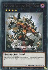 Yu-Gi-Oh! Roi des Lutins Sauvages : R ANGU-FR049