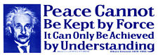 Peace Cannot Be Kept By Force, It.. - Einstein  Magnetic Bumper Sticker Magnet