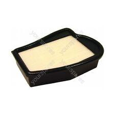Véritable ELECTROLUX filtre lavable hepa (H12)