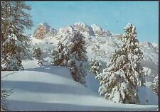 AA4564 Belluno - Provincia - Le Tofane dal Monte Faloria - Cartolina - Postcard