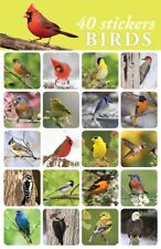 40- Bird Stickers For Student Rewards or Scrapbooking Bright Vibrant Photos