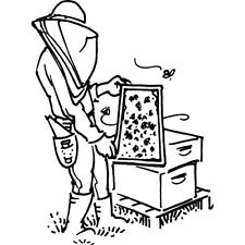 'Beekeeper With Hive' Rubber Stamp (RS025879)