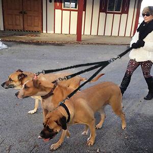 Heavy Duty 3 Way Dog Coupler Leash Triple Bungee Lead Adjustable for Three Dogs
