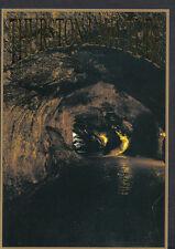 America Postcard - Hawaii - Thurston Lava Tube, The Big Island    B2803