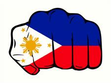 3x Duterte #3 Pride Pinoy Philippines Filipino Hard Hat Stickers Helmet Fist USA