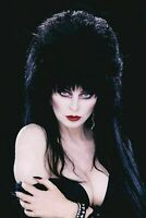 Elvira Shape of Elvira #2 DYNAMITE 1:40 Photo Virgin Variant