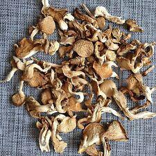 Hypsizygus Marmoreus Dried Wild Wood Wooden Magic Mushrooms Shimeji Dehydrated