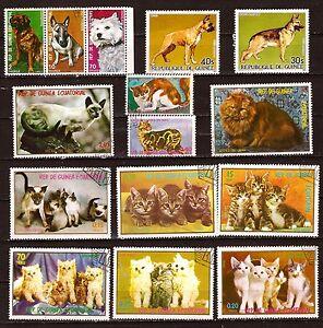 Guinea Rep. Et Equat. Animals Domestic: All Cats & Les Chiens 640A178T4