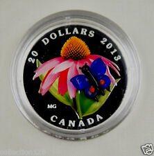 Canada 2013 $20 Coneflower & Butterfly DC (Proof) Silver Commemorative