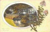 POSTCARD   CHESHIRE   WILMSLOW   The  Carrs