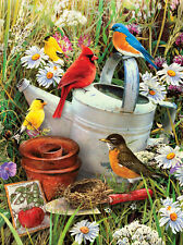 Paint by Number Kit GARDEN BIRDS