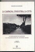 Comune di Calenzano LA CAMPAGNA, L'INDUSTRIA, LA CITTÀ Polistampa 2008 Libro