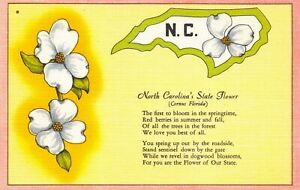 Linen c1930-45 USA Postcard North Carolina's State Flower, Dogwood Blossom 60Y