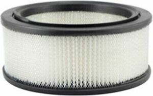 AIR FILTER SUITS FIAT - PA699