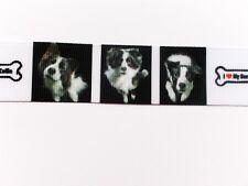 """Webband Hund /""""Border Collie hütet Schafe/"""" Borte Hunde beige 25mm breit 1 Meter"""