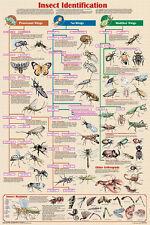 Gamebirds /& Fowl Educational Science Teacher Classroom Chart Print Poster 24x36