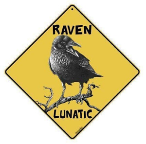 "RAVEN LUNATIC Sign--Alert Sign, 16"" on Diagonal 12"" X 12"" on Sides, Aluminum"