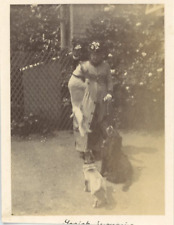 UK, A Lady and her dogs  Vintage albumen print.  Tirage albuminé  7x10  Ci